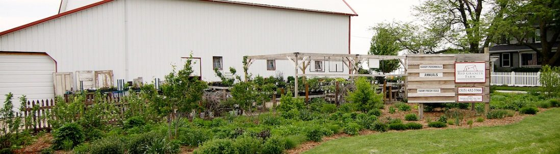 Red Granite Farm Locally Grown Produce Eggs And Perennial Plants