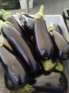 Veg-Eggplant-red-granite-farm