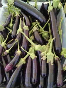 veg-eggplant-hansel-red-granite-farm